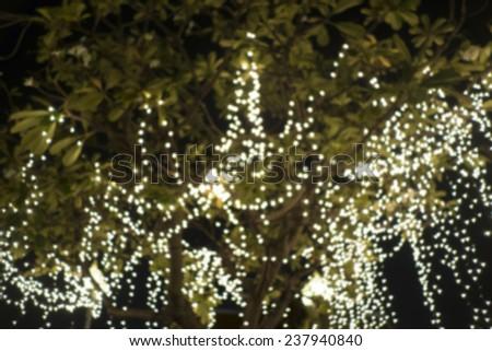 light on a tree - stock photo