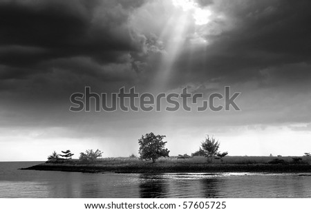 light shine on tree - stock photo