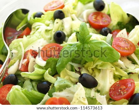 Light vegetarian salad with olives and lettuce, closeup