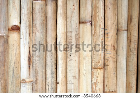 light wood texture background image