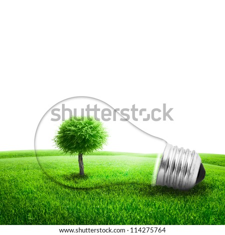 Lightbulb with a tree growing inside in field. Environment or energy concept background - stock photo