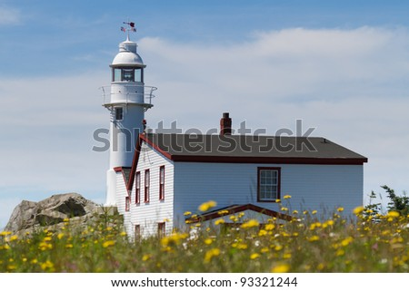Lighthouse in a meadow - stock photo