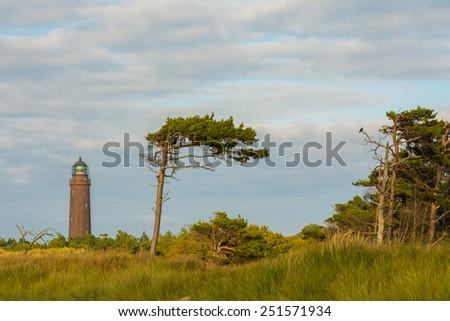 lighthouse of Darss Peninsula in Germany at sundown - stock photo
