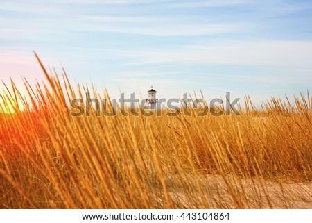 Lighthouse seen through the dunes  - stock photo