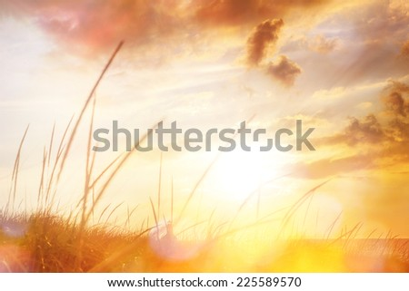 Lighthouse view through Dune grasses at sunset - stock photo