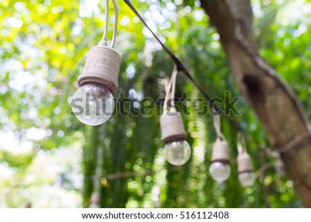 Lighting on Wire In Tree Background