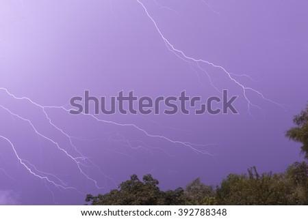 lightning in the purple sky - stock photo