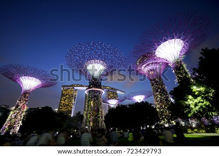 lights and music transform the iconic super trees every evening during the gardens by the bay - Garden By The Bay Music