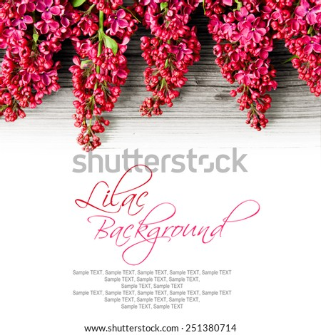 Lilac blooms on on wooden surface with space for the text - stock photo