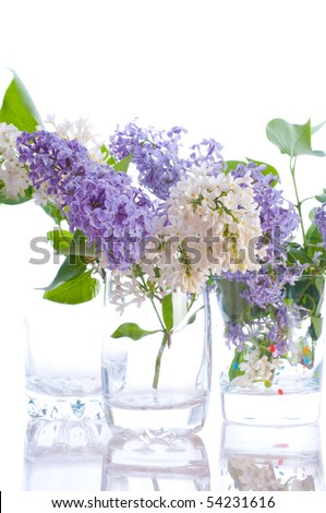 Lilac bouquets. Isolation on the white - stock photo