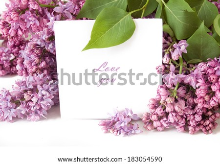 Lilac flower bunch with white blank isolated on white background