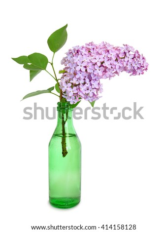 lilac flower in green bottle isolated on white