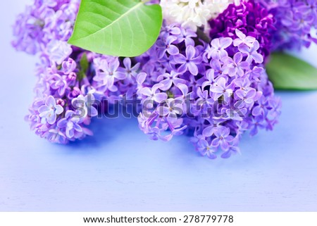 Lilac flowers bunch over blue wooden background. Beautiful Lilac spring flower design closeup. Copy space for your text - stock photo