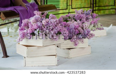 Lilac in white wooden boxes