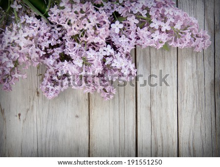 Lilac on weathered wood - stock photo