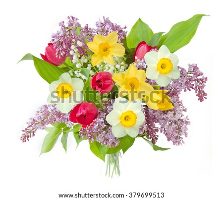 Lilac, tulips and narcissus flowers bunch isolated on white background