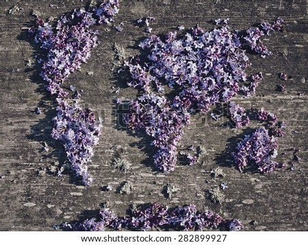 Lilac world map on old wood background