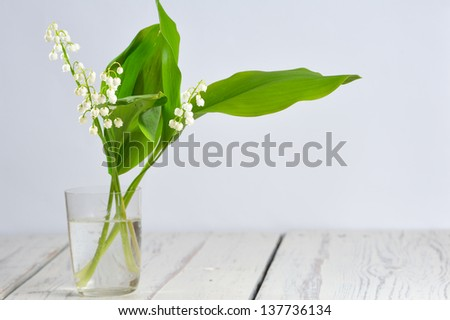 Lilies of the valley in transparent glass on light background - stock photo