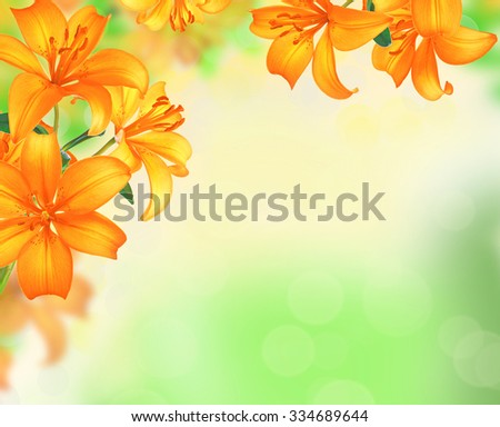 Lily Flowers border design over blurred nature background. Summer Flowers - stock photo