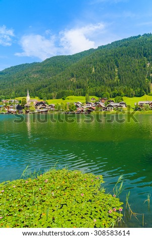 Lily flowers on green water Weissensee lake in summer landscape of Alps mountains, Austria