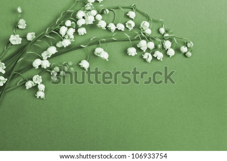 Lily of the valley on blue background - stock photo