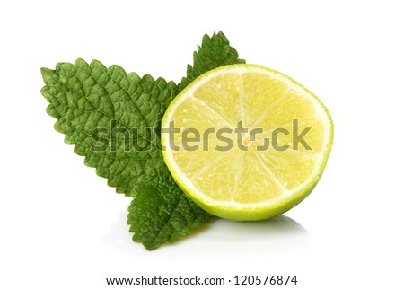 Lime and mint on a white background. - stock photo