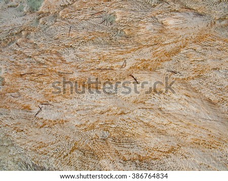Lime-calcium deposits and fir-needles on the hill in Pamukkale (Turkey) - stock photo