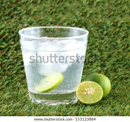 Lime Drink - stock photo