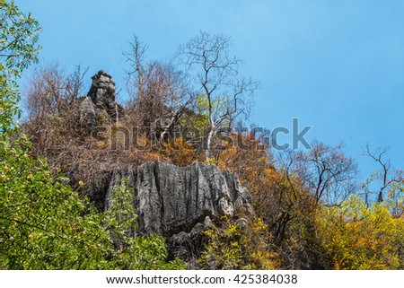 limestone mountains and tree up on rock,  cliff limestone