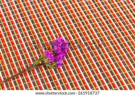 limonium with plate mat background.