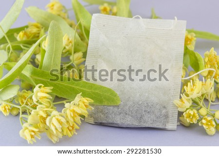 Linden tea bag with fresh yellow  lime  flowers in blossom - stock photo