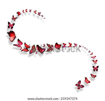Line of flying red and pink butterflies - stock photo