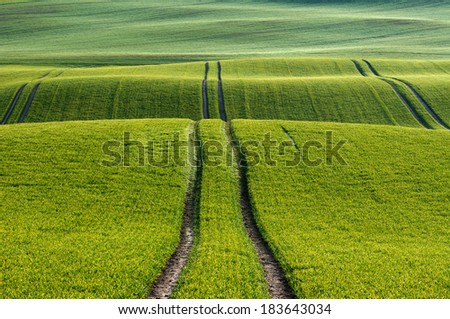 Lines and waves in detail look at the fields in the spring.   - stock photo