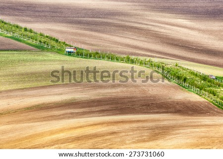 Lines and waves with with grass border, South Moravia, Czech Republic - stock photo