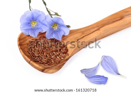 Linum blossoms, flaxseed - stock photo