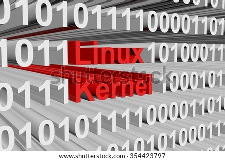 Linux kernel is presented in the form of binary code
