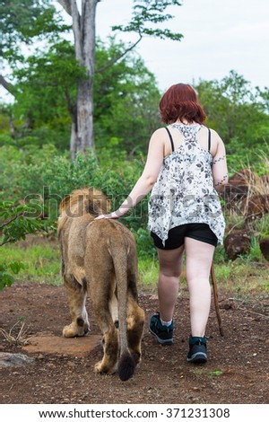 Lion and a girl walk together  in Zimbabwe, Africa