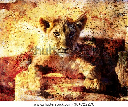 Lion cub photos and painting Abstract Collage. Eye contact. - stock photo
