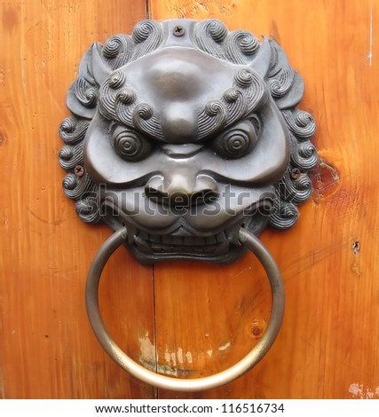 lion door - stock photo