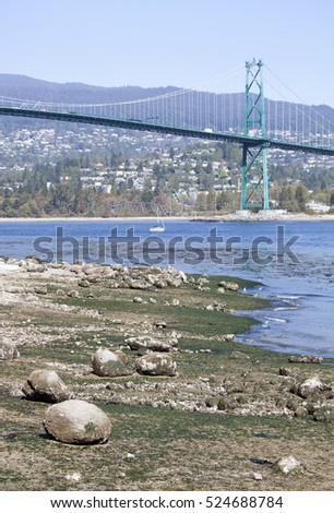 Lion Gates bridge over Vancouver Harbour during the low tide (British Columbia).