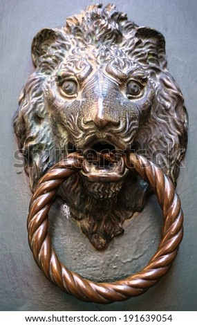 Lion head metal door knocker - stock photo