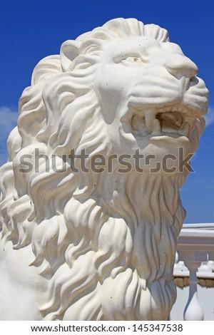 Lion's head - stock photo