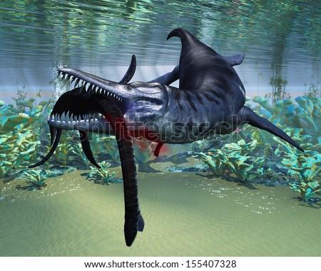 Liopleurodon attacks Plesiosaurus - A hapless Plesiosaurus becomes a meal for the much larger Liopleurodon aquatic reptile. - stock photo