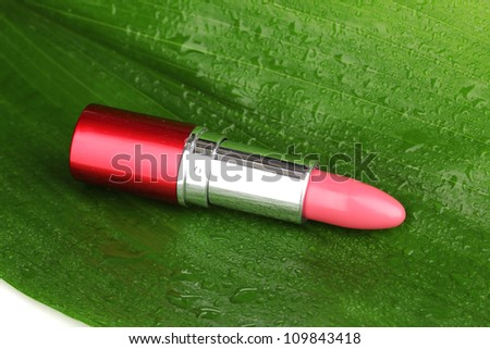 lipstick on green leaf close-up