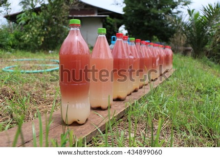 Liquid organic fertilizer. Microbes From fermentation and photosynthesis. - stock photo