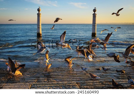 Lisbon landmark Columns Dock with many seagulls at sunset - stock photo
