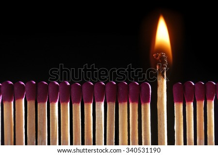 Lit match standing middle of row of matches, close-up - stock photo