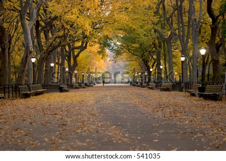 Literary Walk in Central Park during autumn - stock photo