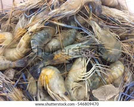 Vannamei Shrimp Stock Photos, Royalty-Free Images ... - photo#38