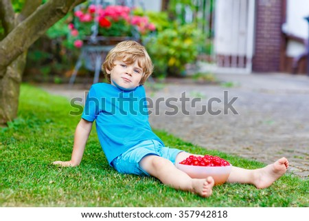 Little adorable kid boy having fun with picking and eating cherries in domestic garden on warm summer day, outdoors. Healthy snack for children in summer. Kids helping with gardening - stock photo